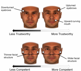 male fillers
